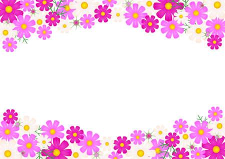 コスモスの花 - 背景