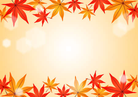 broadleaved tree: Background pattern of the japanese maple