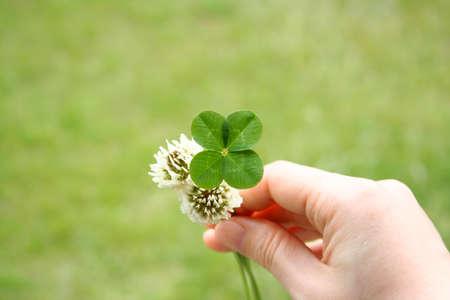 4 つ葉のクローバーと花