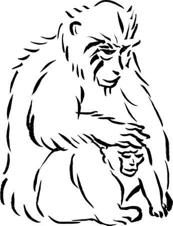 猿の和風イラスト