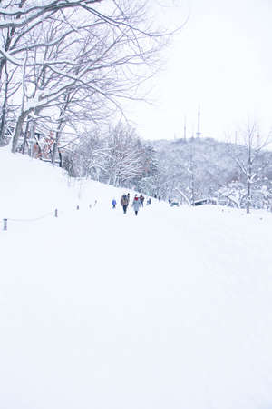 Winter snow in Hokkaido