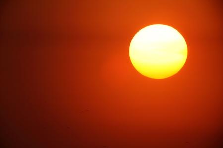 Sunset whit a large sun