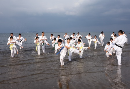 adherent: Ehime, Japan - January 3: Japanese martial art houses training of karate at the new year at the Ichinomiya beach. January 3, 2012 in Ehime, Japan. Editorial