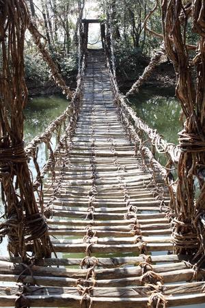 古い吊り橋、植物のつるを構築 写真素材