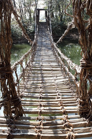 Old suspension bridge, constructed the plant vine 스톡 콘텐츠