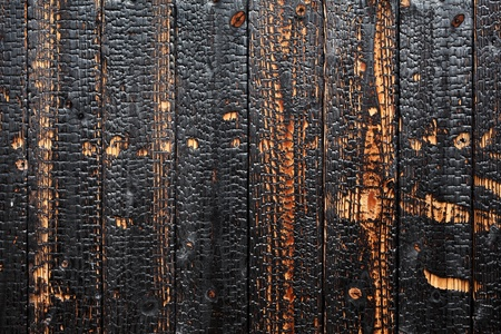 Burnt wood background texture photo