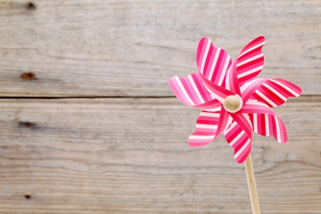 Toy pinwheel photo