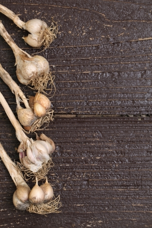 Organic garlic on wooden table photo