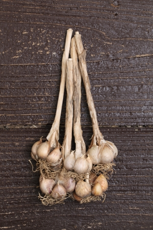 Organic garlic on wooden table Stock Photo - 14520119