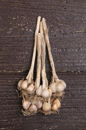 Organic garlic on wooden table Stock Photo - 14520119