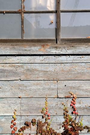 weathered old barn Stock Photo - 17001109