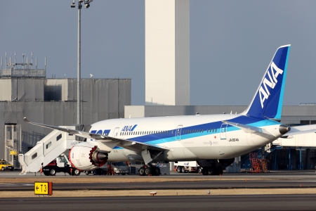 TKAMATU, KAGAWA, JAPAN - February 2, 2013 -  Boeing 787 which landed in emergency because of the trouble of a battery on February 2, 2013 at Takamatu Airport. Editöryel