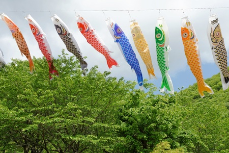 Japanese carp streamer decoration on the Children s Day photo