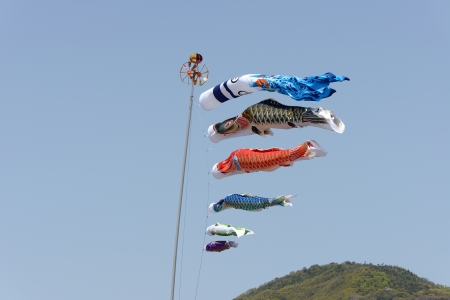 Japanese carp kite, decoration against blue sky photo