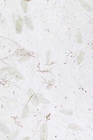 Handmade japanese rice paper, texture background Standard-Bild
