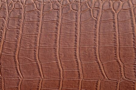 brown crocodile skin texture background, close up photo