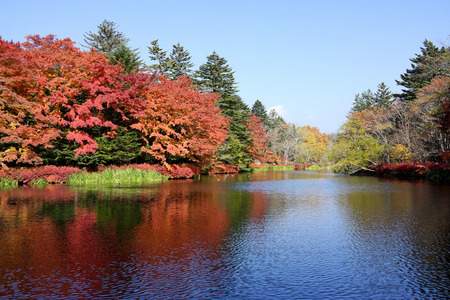 Autumn colour of pond, Karuizawa, Nagano, Japan  photo