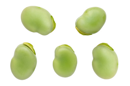 broad beans isolated on white background