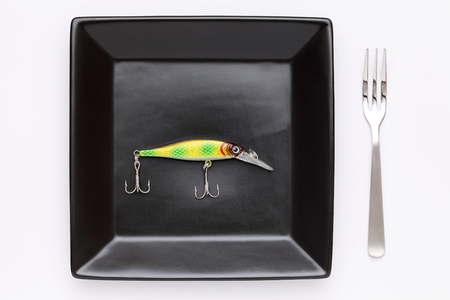 fishing lure on plate photo