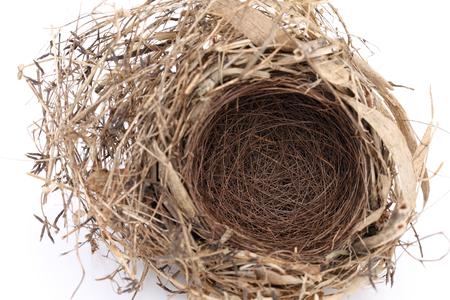 Detail of empty bird nest on white background photo