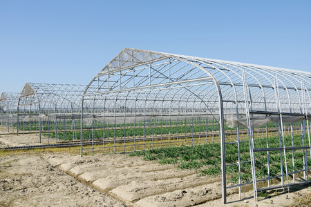 farm structure: Agricultural building against a blue sky