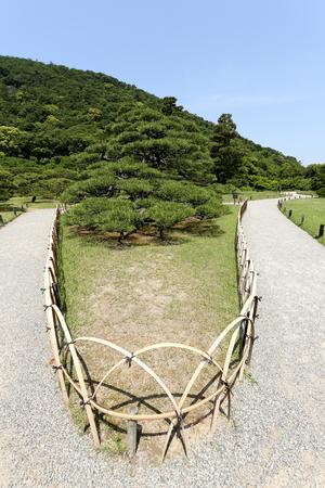 Japanese garden with pine trees Ritsurin Garden photo