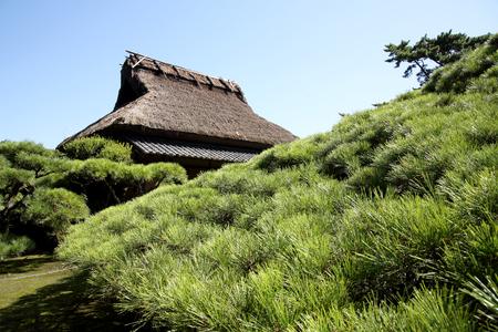 japanese tea garden: Tea house in a beautiful japanese garden Stock Photo