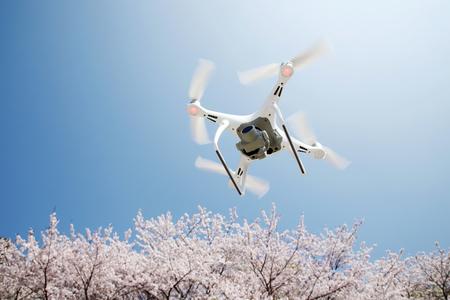Drohne fliegt in der Luft, mit wunderschöner Kirschblüte und einem klaren blauen Himmel