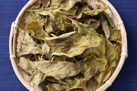 dried persimmon leaves, herbal medicine in a bamboo basket Stock Photo