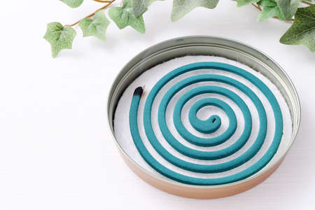 Classic green mosquito coil in a metal plate on white background