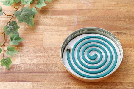 Classic green mosquito coil in a metal plate on table Stock Photo