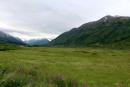 alaska scenic: Mountain in Alaska