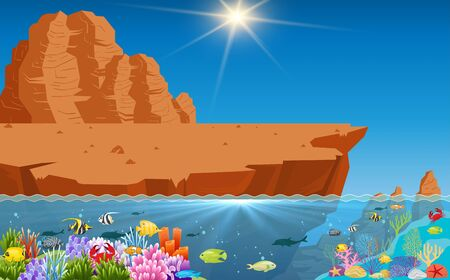 beautiful of fish and coral