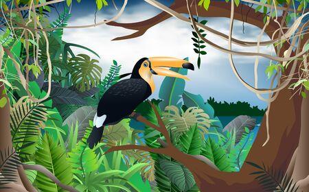 Horn bill bird in the jungle