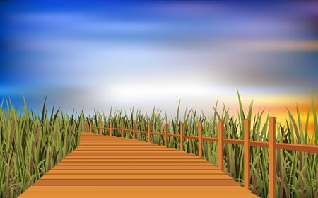 Wooden walkway at the meadow in the morning