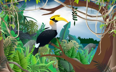 hornbill bird on the tree in the jungle 向量圖像