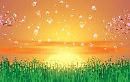 bubble on landscape of green grass in sunset