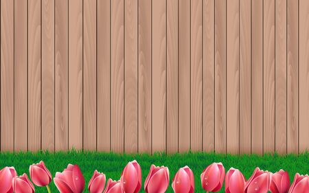 wooden wall at the garden in the house