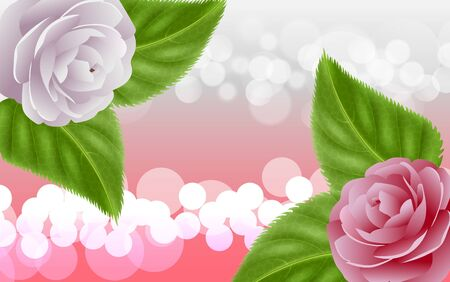 camellia flowers with light abstract background Illustration