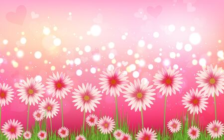 pink daisy flower with green abstract background