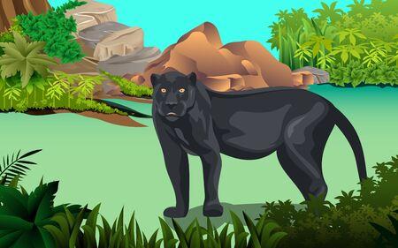 Black panther In the jungle Illusztráció
