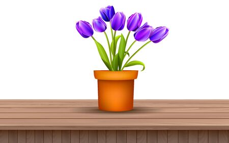 purple tulip in vase on the wooden table