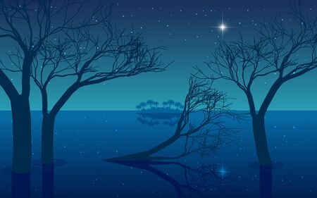 landscape of mangrove forest on the beach in the night