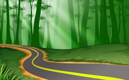 landscape of the road in the forest Illustration