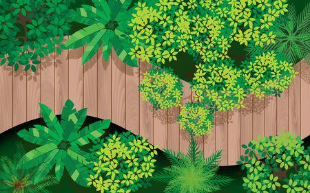 topview wooden bridge in forest 向量圖像