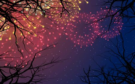 colorful fireworks on the sky in the night