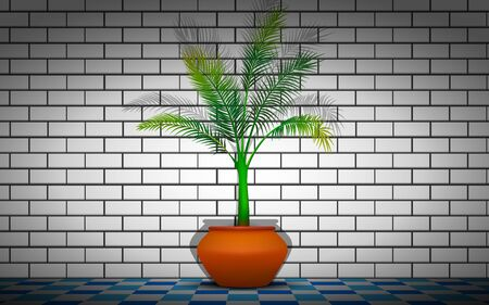 coconut tree at the white brick wall background