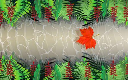 landscape of rill in the jungle 版權商用圖片