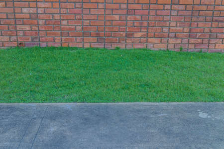 red brick: Old Red brick wall and green grass