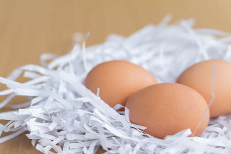 to seem: pile of eggs in the paper cut seem like a nest